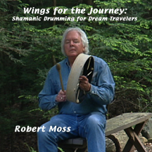 Wings for the Journey